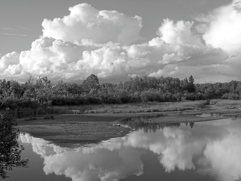 Cloudy Reflections by Gene Cyr