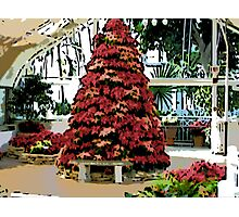 Comic Abstract Poinsetta Holiday Tree Photographic Print