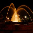 Fountain at night by Terry Best