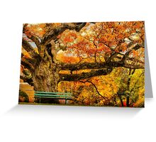 Colorful Old Oak Tree Greeting Card