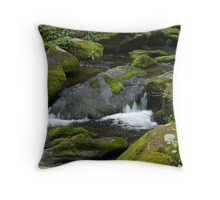 Mossy Dream Throw Pillow
