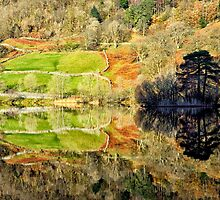 Rydalwater Reflections by Gary Kenyon