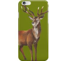 Grand Stag iPhone Case/Skin