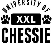University Of Chessie by kwg2200