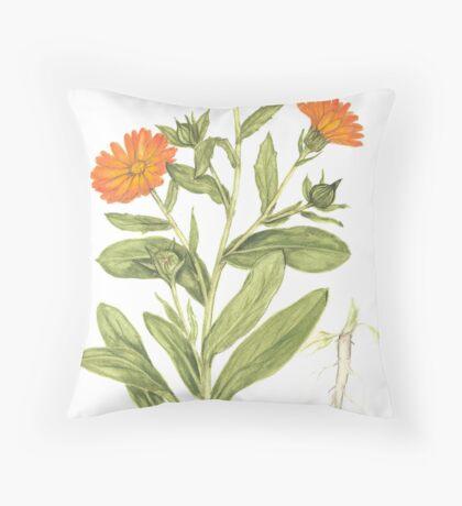 English Marigold - Calendula officinalis Throw Pillow