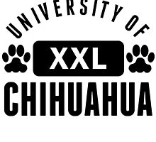 University Of Chihuahua by kwg2200