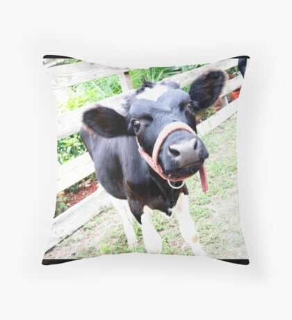 Cow-Cow Throw Pillow