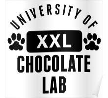 University Of Chocolate Lab Poster