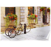 Tandem Bicycle and Flowers 2 Poster