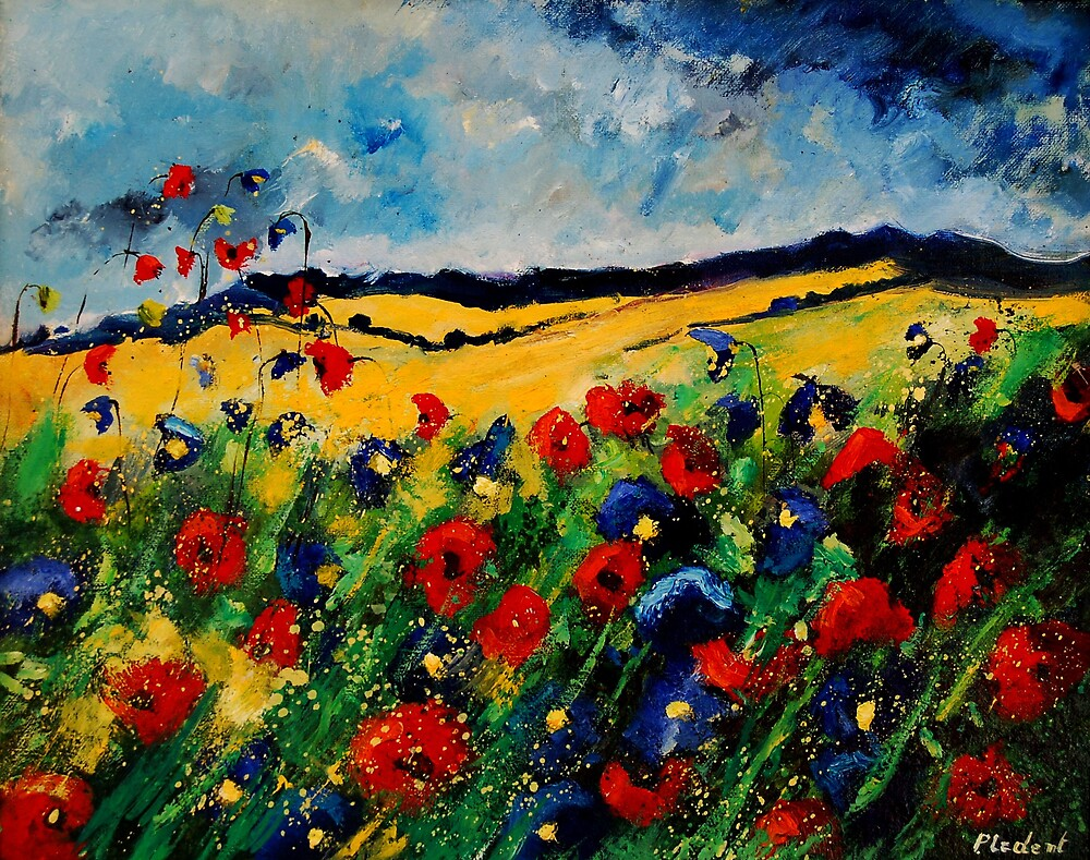 red and blue poppies 45 by calimero