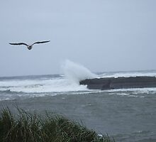Wave Crashing Over the Jetty by Mardav7777