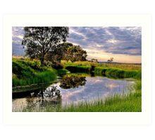 """""""Backwater at Hospital Swamp"""" Art Print"""