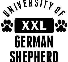 University Of German Shepherd by kwg2200