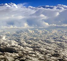 White Fluffy Clouds by Robin Fortin IPA