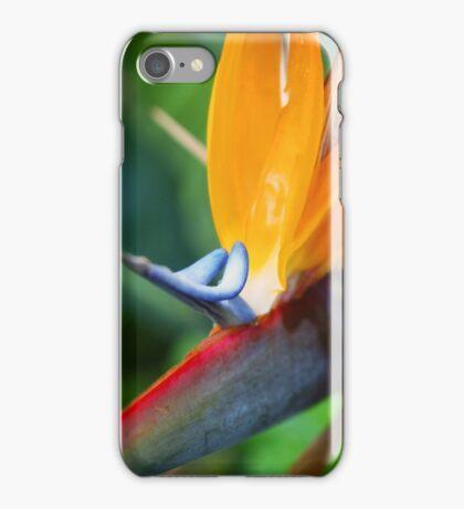 flying iPhone Case/Skin