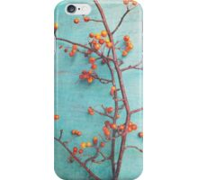 She Hung Her Dreams on Branches iPhone Case/Skin