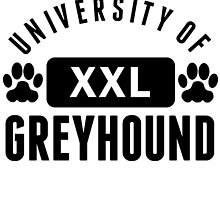 University Of Greyhound by kwg2200