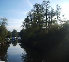Norfolk Broads Morning by HevroEgan