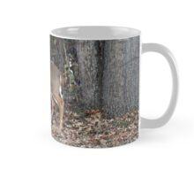 Prince of the Forest Mug