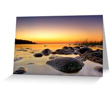 Macgregor Point  Greeting Card