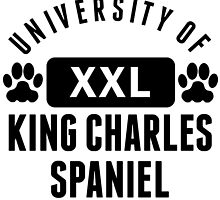 University Of King Charles Spaniel by kwg2200