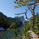 Colorado Mountain Lake by aladdincolor