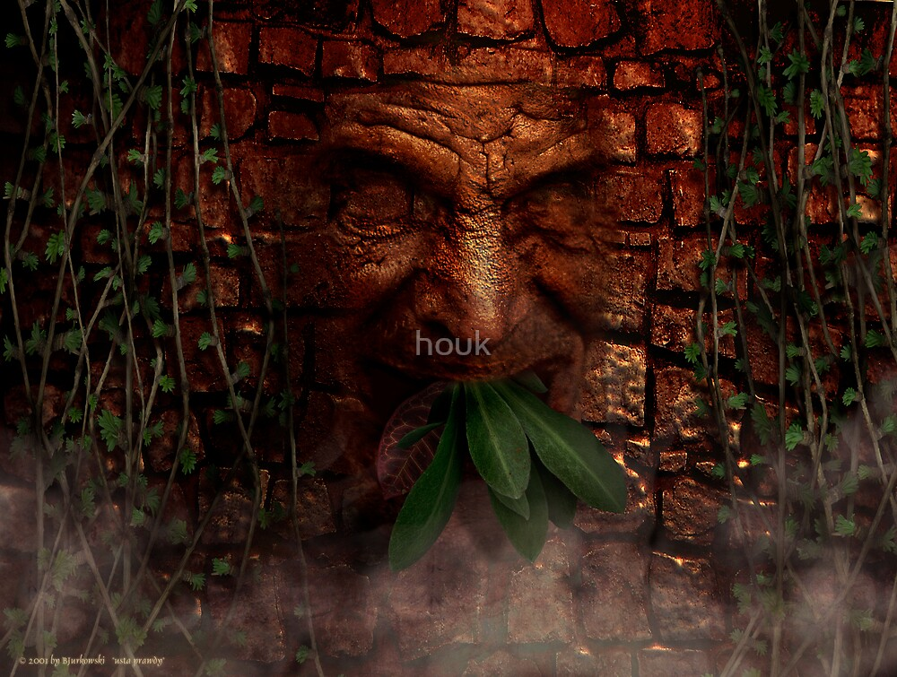 it's mouth truth by houk