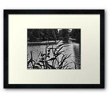 SPOOKY SILENCE Framed Print