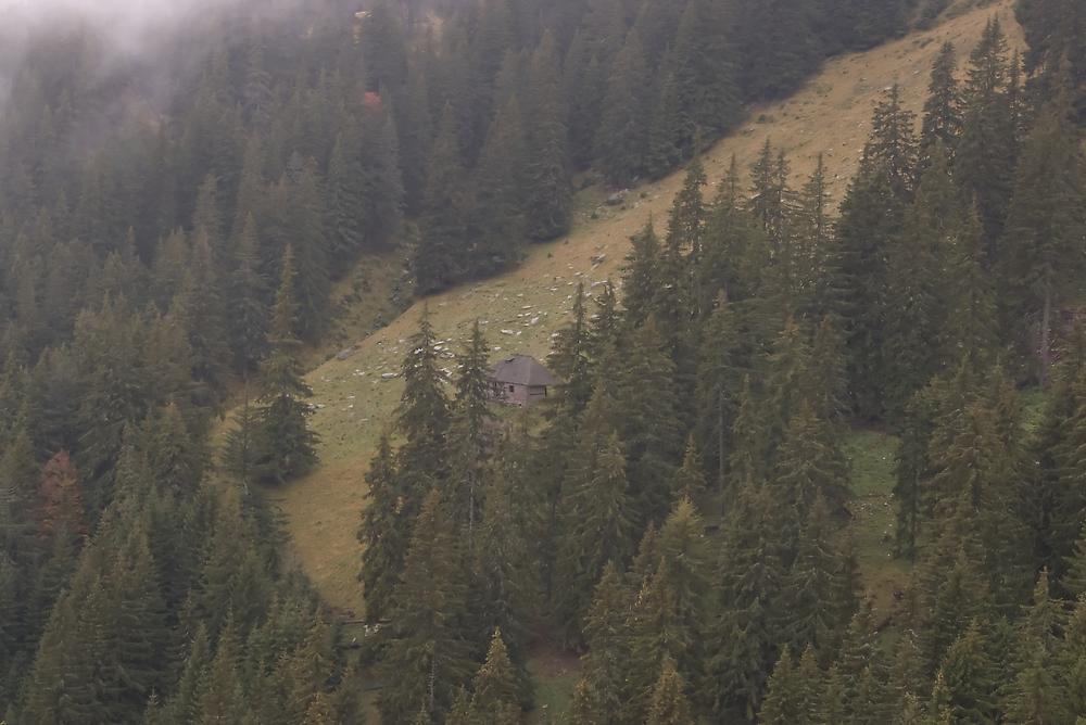 Small hut by ictin