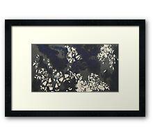Garden - 2007 Framed Print