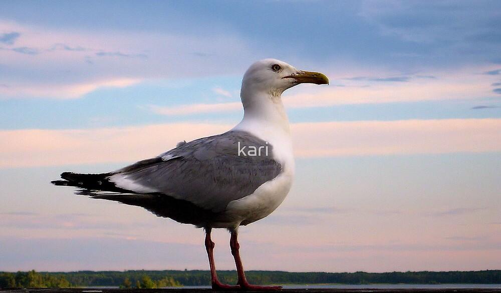 Bird Legs by kari