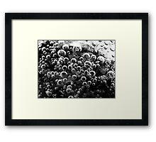 Bubbles 3 Framed Print
