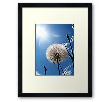 At the Wind's Mercy Framed Print