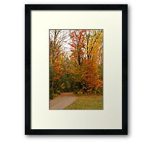 My Road to Happyness Framed Print