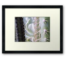 Prickly View Framed Print