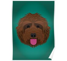 Brown Labradoodle Poster