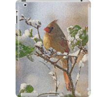 Cardinal on Snowy Branch iPad Case/Skin