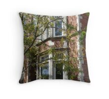 Sunday afternoon at Chelsea Throw Pillow