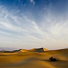 Mesquite Dunes by morealtitude