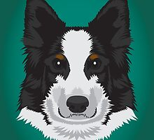 Border Collie  by threeblackdots