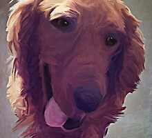 Barley Portrait by Jeff Clark