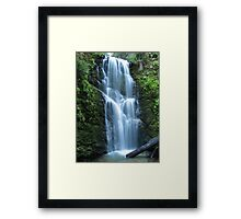 Berry Creek Falls Framed Print