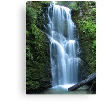 Berry Creek Falls Canvas Print