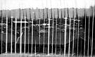Flatscape by John Douglas