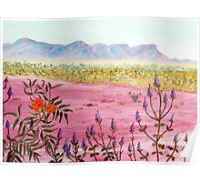Flowers of the Pilbara Poster