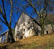 Empty Farmhouse In Julian Alps by Rok Cuder