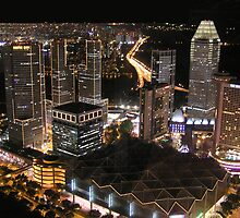 Singapore by Night by JayVee