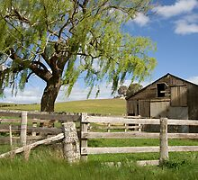 Derelict Barn by AustralianImagery
