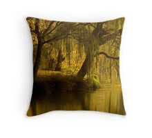 Lake Weeroona Reflection Throw Pillow