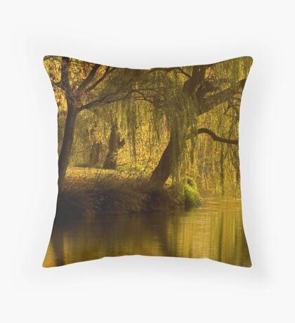 Lake Weeroona Reflection Throw Pillow